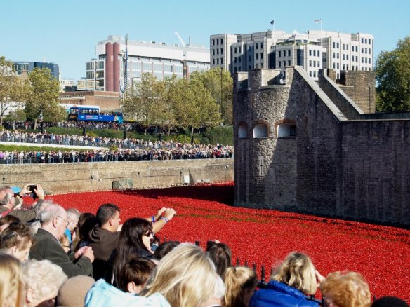 The field of ceramic poppies that fills the moat of the Tower of London. An appropriate memorial to the dead of World War 1.